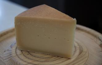 Käse-Aktien