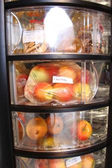 24h Früchteautomat