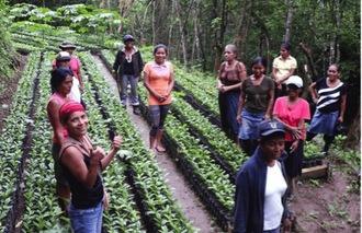 Indigene Kaffeerösterei