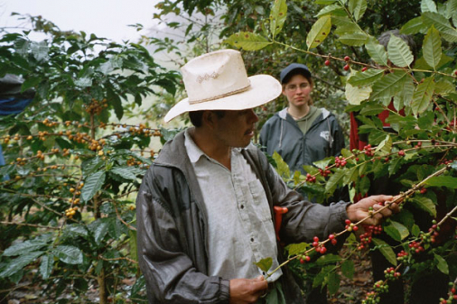 FCW hilft Chiapas!