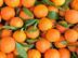 Crowdorder Orangen
