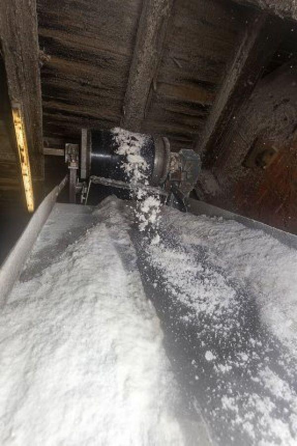 unser Salz ist 250 Mio. Jahre alt