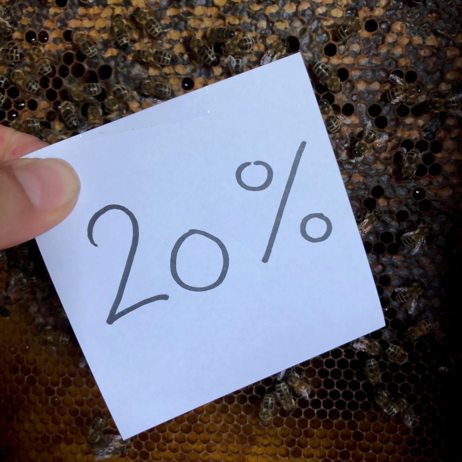 20% überschritten!