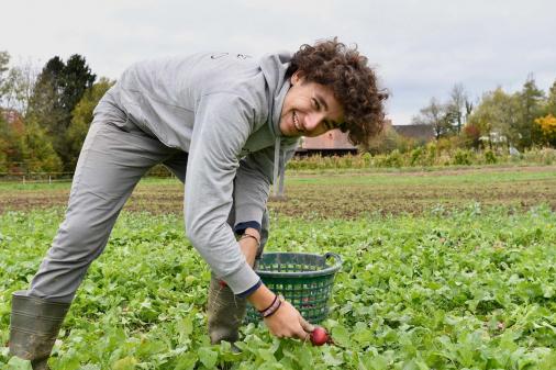 Zürcher Gemüse retten!