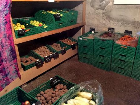 Berner retten Gemüse!