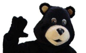 黑熊在路上了!