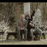 TREE GUM