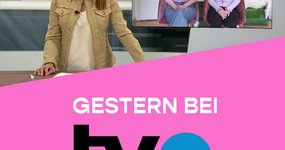 NO SHAME IN THE GAME BEI TVO