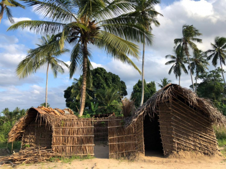 Help for Zanzibar