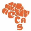 Support Team for Barrier Free in ECAS