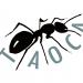Taoca Kollektiv