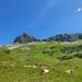 Alp  Inner Iselten